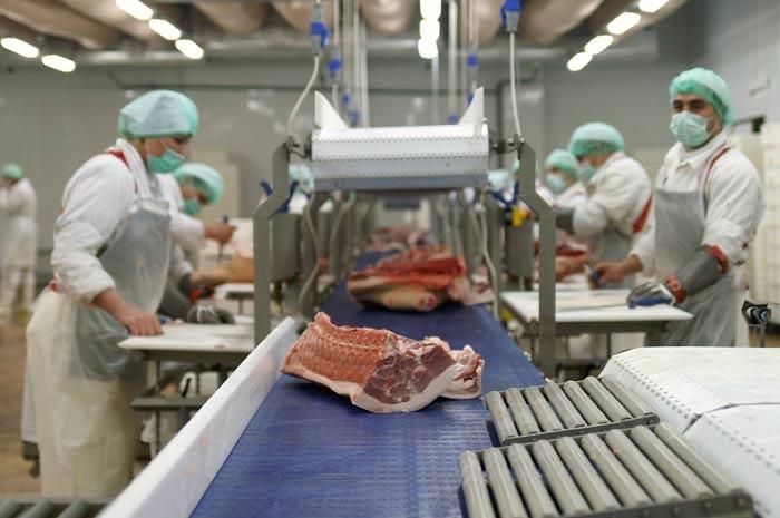 Технология переработки мяса