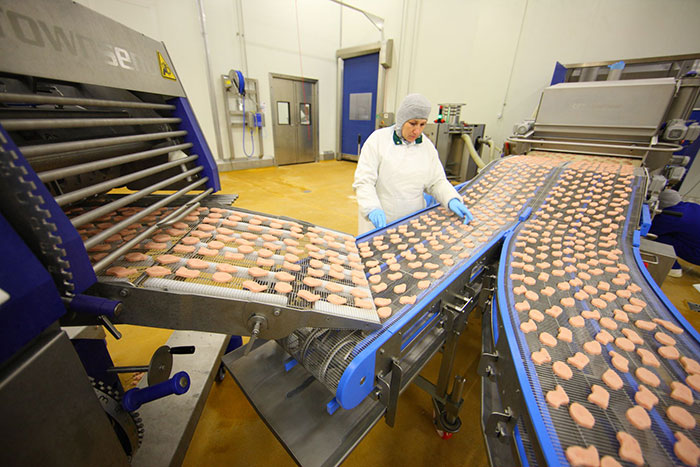 Производство мясных продуктов, куриного мяса — Мастер Милк